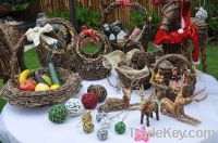 Presentation, fruits and accesories