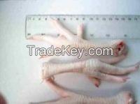 Halal Frozen Chicken Feet Grade A