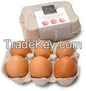 Fresh Chicken Table Eggs Brown and White
