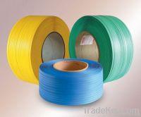 PET Strap (different colors)