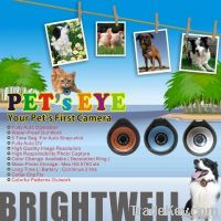 Brightwell Pet's camera