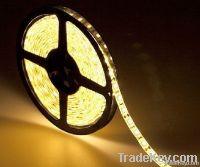 LED Strip Light (12V/24V)