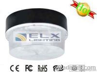 Induction Ceiling Lamp