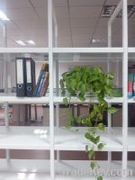 Book cases / display rack