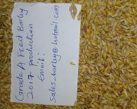 Animals feed barley