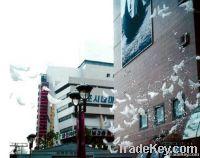 Aliexpress promotion Wedding Dove BalloonDove Balloon Dove Shape Ballo
