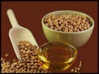 Soya Bean Oil | Refined Soybean Seed Oil