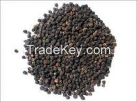 Offer To Sell Pepper