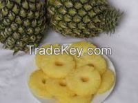 Offer To Sell Canned Pine Apple Slices
