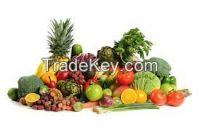 Offer To Sell Fruits and Vegetables