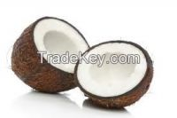 Offer To Sell Fresh Coconut