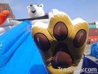 Inflatable Glacier Slide