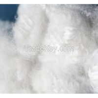 POLY Fiber Manufacturers Suppliers from CHINA