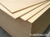 High grade birch plywood