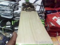 CA PLUS 15000 CRICKET BAT
