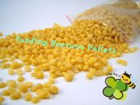 pure beeswax from China