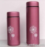 Stainless steel vacuum flask/thermos