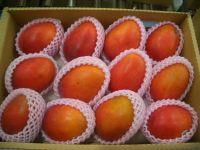 Taiwan Fresh Organic Irwin Mango Apple mango Fresh Fruit