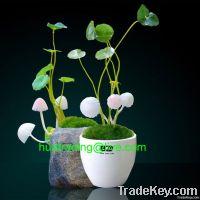 Mushroom bonsai light, LED decorative lamp, Mushroom LED lamp