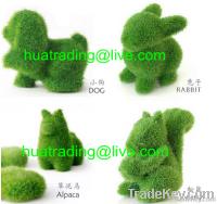 Artificial Grass Toy