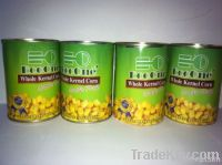 Canned Sweet Corn/Canned