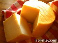 fresh bulk Cheddar cheese