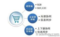 Website Design Shanghai