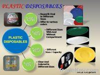 Disposables plastic plates, cups, bowls etc.