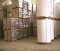 corrugated paper roll / medium fluting paper / fluting and testliner paper