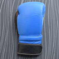 Real Leather Blue Boxing Gloves Supplier