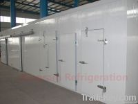 Meat and Fish Processing Cold Storage