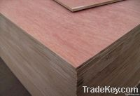 For Packing and Furniture Use Commercial Plywood