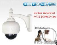 China Wireless Outdoor IP Camera
