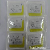 absorbable plain catgut suture with needle