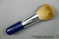 Face and body brush