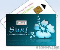 Secure Memory Card (SLE-4442)