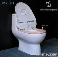 Toilet Seat with Constant Temperature