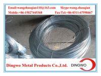 Galvanized iron wire/galvanized iron wire/electro galvanized wire/hot dip galvanized wire