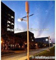 wind and solar street light