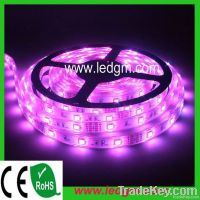 High quality flexible SMD5050 RGB LED strip light