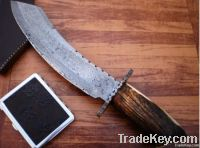 Damascus Hand made Carbon Steel Fixed Blade knife with with Cow wood