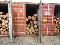 Pine logs with bark -