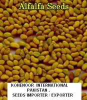 Alfalfa Seeds  ( Lucerne , Medicago Sativa ), Sesbania Seeds