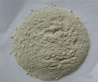 Shell powder