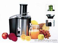 Stainless Steel 700-Watt Juice Extractor