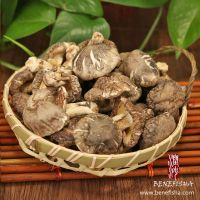 Dried Mushrooms Of Various Sorts