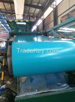 Prepainted Galvanized Steel Coils ( PPGI )