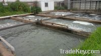 Industrial, municipal and living waste water treatment plant