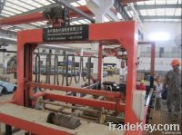 Automatic& semi-automatic& emergency manual metal electroplating line