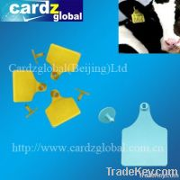 RFID ear tag for cattle